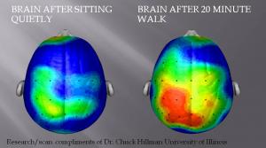brain pw