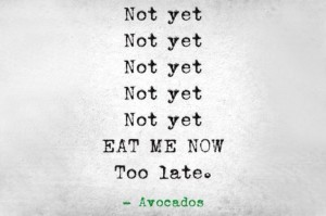 avocados wait